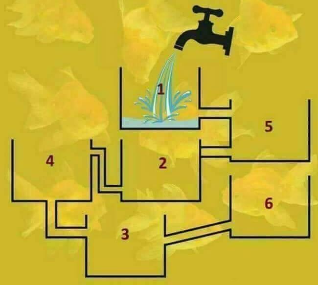 Dokážete vyriešiť náš chyták? Ktorá nádrž sa podľa vás naplní ako prvá?