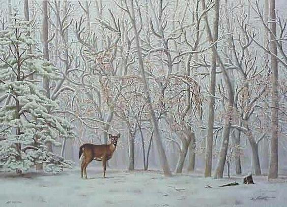 obrázkový hlavolam - nájdi jelena. V skutočnosti ho máte doslova pred očami...ale kde je?