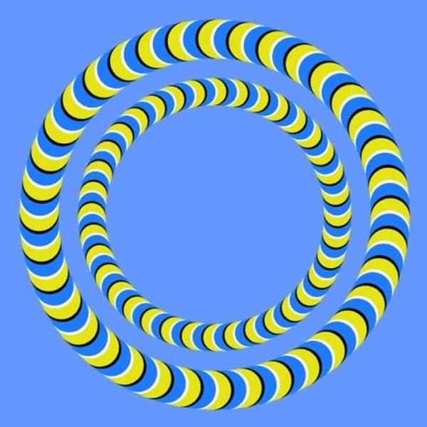 Oba kruhy sú statické, alebo sa točia? Očné klamy dokážu perfektne oklamať ľudský zrak. Čo vidíte vy?