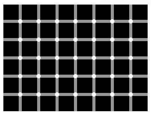 Spočitajte všetky čierne bodky. Optický klam, ktorý vás poriadne zamotá!