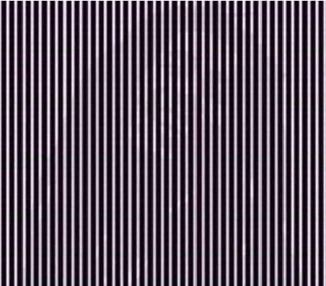 Optický klam pôsobí, ako keby bol niekto za mrežami. Kto to je?